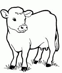 cow animals coloring pages for kids printable animal and eson me