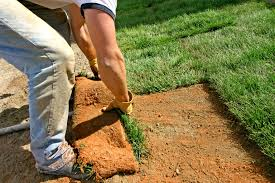 how to lay sod to start new lawns instant grass