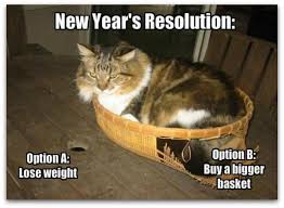 Happy New Year Funny Meme - download happy new year gifs images 2017