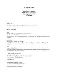 Sample Resume For Child Care by Resume Examples Free Resume Examples It Professional Sample