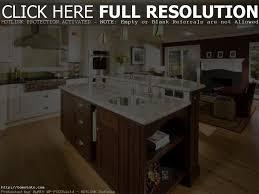 linoleum vs vinyl modernize best kitchen designs