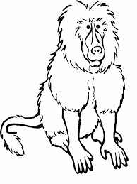 baboon coloring pages download and print for free