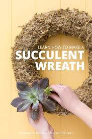 How To Make A Succulent Planter How To Make A Living Succulent Wreath Succulents And Sunshine