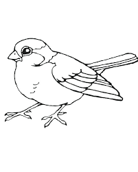 bird coloring pages for toddlers bird coloring pages little bird coloring page bird coloring pages