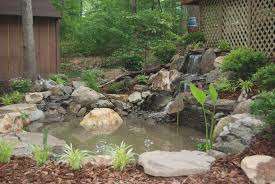 backyard duck pond ideas lovely small garden pond ideas uk small