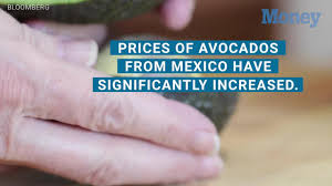 avocados are why you can u0027t afford a home millionaire says money