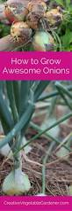 Urban Gardening Magazine Best 25 Organic Gardening Magazine Ideas On Pinterest Caring