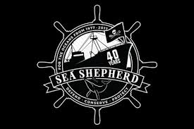 australian shepherd trackid sp 006 sea shepherd new zealand home
