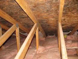 Cost To Remove Mold In Basement - attic mold remediation experts toxic black mold removal ma