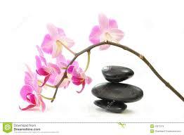 Image Zen Gratuite by Zen Violet Photos Stock Inscription Gratuite