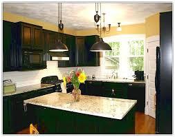 painted black kitchen cabinets painted black kitchen cabinets bestreddingchiropractor