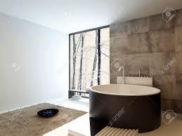 contemporary design luxury bathroom interior with a freestanding