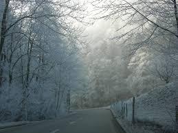 grã newald treppen winterzauber f08912c4 5bde 47c3 8b77 a72894085344 jpg width 1000