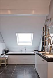 43 best images on pinterest bathroom ideas fabulous bathroom with low vaulted roof white beam and skylight over bath