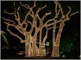 outdoor tree lights solar modern looks solar powered outdoor