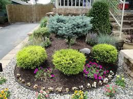 Bushes For Landscaping Landscape Design Plants Garden Design Ideas Pinterest