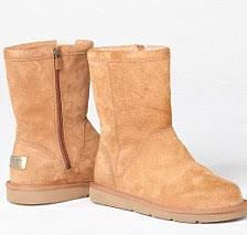 womens ellee ugg boots uk the dogs dying for your ugg boots daily mail