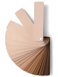 best 25 neutral skin tone ideas on pinterest skin undertones