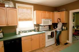 a very reluctant kitchen renovation