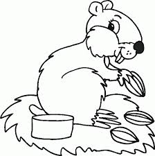 cute squirrel coloring clipart panda free clipart images