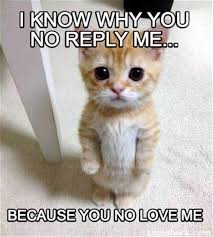 Why You No Reply Meme - i love me meme 28 images 25 best memes about im weird im weird