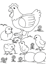 farm animal chicken coloring pages womanmate com
