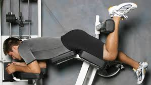 Seated Bench Press Alternative Exercises To Gym Machines For New Garage Gym Owners