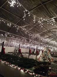 visit floyd virginia floyd christmas tree u0026 greenery u2013 come visit