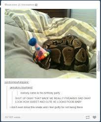 Birthday Meme Tumblr - awesome tumblr 351 by annie boismenu meme center