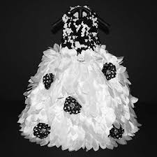 dog wedding dress black and white couture dog wedding gown