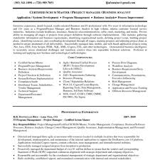 picture of resume exles sle resume senior programmer analyst resume exles pertaining