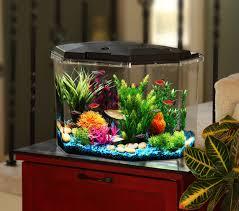 halloween fish tank background aqua culture 6 5 gal semi hex aquarium kit walmart com