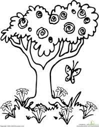 color the springtime tree worksheet education com