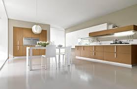 Simple Kitchen Interior Kitchen Simple The Magika Kitchen From Pedini Interior