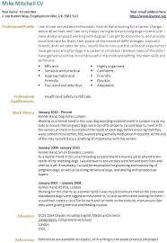 career change resume templates career change resume template gallery of resume templates