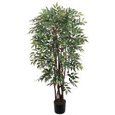 4 potted similax silk tree silk specialties