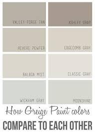 best paint color for whole house my web value