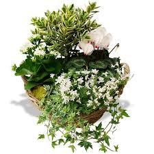 sympathy flowers flowers mémoire du coeur
