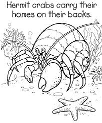 Cute Crab Coloring Pages Hermit Page Printable Best Crafts Ideas Crab Coloring Page