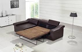 Best Ikea Sofas by Best Ikea Pull Out Couch U2014 Home U0026 Decor Ikea
