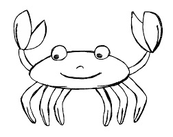 hermit crab clipart seashell pencil and in color hermit crab