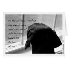 sympathy for loss of dog loss of pet dog sympathy card gazing outside zazzle