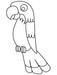 parrots coloring pages the 25 best pirate parrot ideas on pinterest