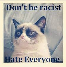 Frown Cat Meme - 21 grumpy cat memes to instantly make you grumpy however happy you