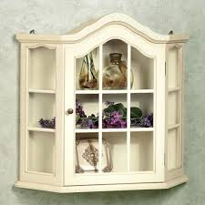 Wall Curio Cabinet Glass Doors Curio Cabinets With Glass Doors Gorgeous White Hanging Curio