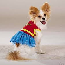 Extra Small Halloween Costumes Dc Comics Woman Dog Pet Costume Dress Xs Extra Small