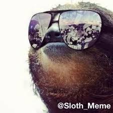 Sloth Meme Images - sloth meme sloth meme twitter