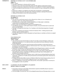 sle consultant resume travel consultant resume sles velvet education template student