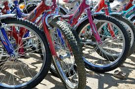fort myers bicycle shops 10best shopping reviews