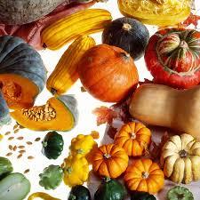 cuisine automne zoom sur les produits de l automne à cuisiner et à consommer